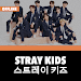 Stray Kids Offline - KPop icon