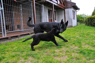 Photo: Ikita og Vilma leker