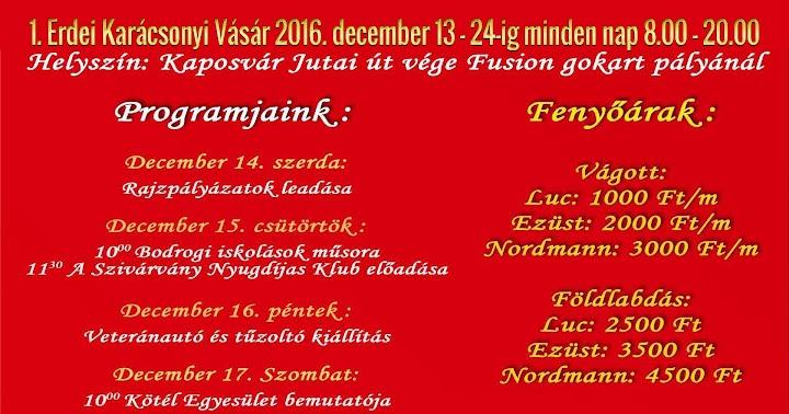 1. Erdei Karácsonyi Vásár 2016 Kaposvár