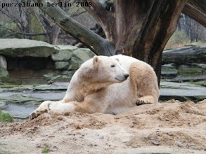 Photo: Entspannung auf dem Sandhaufen muss auch sein ;-)