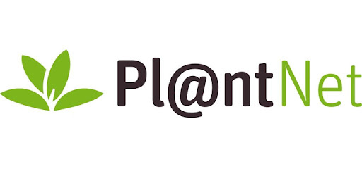 PlantNet určování rostlin – Aplikace na Google Play