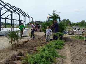 Photo: coniferen liggen klaar om gepoot te worden