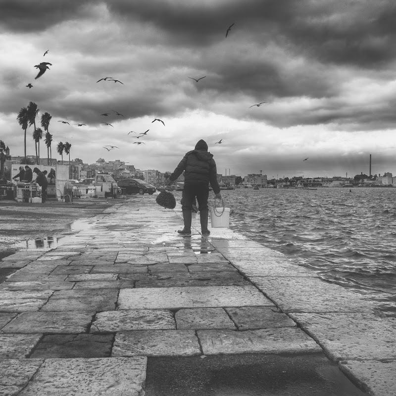 Gennaio sul mare. Taranto 1 gennaio 2019. di ZERRUSO