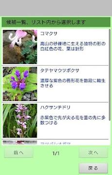 高山植物がすぐわかるフリー版のおすすめ画像3