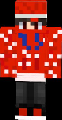 skin terix 195 60