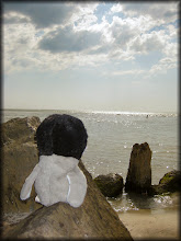 Photo: Carlisle looks out at the Gulf.