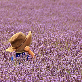Under the hat by Tony Walker - Babies & Children Children Candids ( purple, hiding, hands, lavender, boy, hat,  )