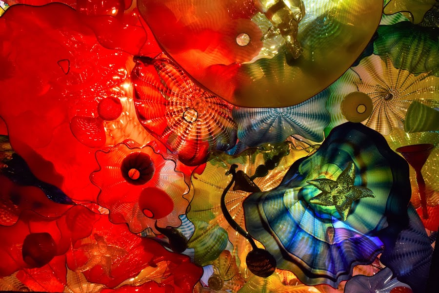 Chihuly Ceiling Maker's Mark Distillery by Lorna Littrell - Artistic Objects Glass ( artistic glass, art, glass, artistic objects, artwork,  )