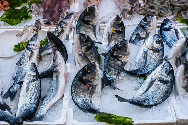 Oggi pesce di Nut