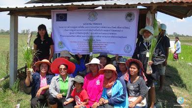 Photo: Happy Farmers - Group photo , TOT2 , Tha Tum, Surin