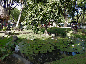 Photo: Bougainville Park, downtown Papeete
