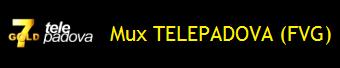 MUX TELEPADOVA (FVG)