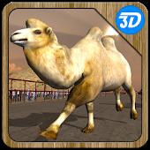 Camel Racing Simulator 3D
