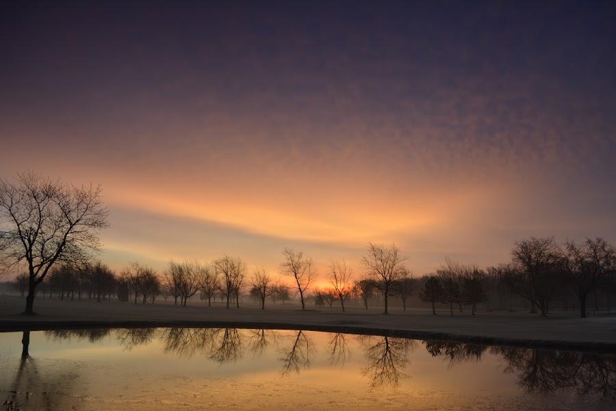 A December morning by Thomas Fitzrandolph - Landscapes Sunsets & Sunrises ( water, nature, western new york, niagara county ny, trees, nikon d5200, sunrise, landscapes, lockport ny, sun,  )