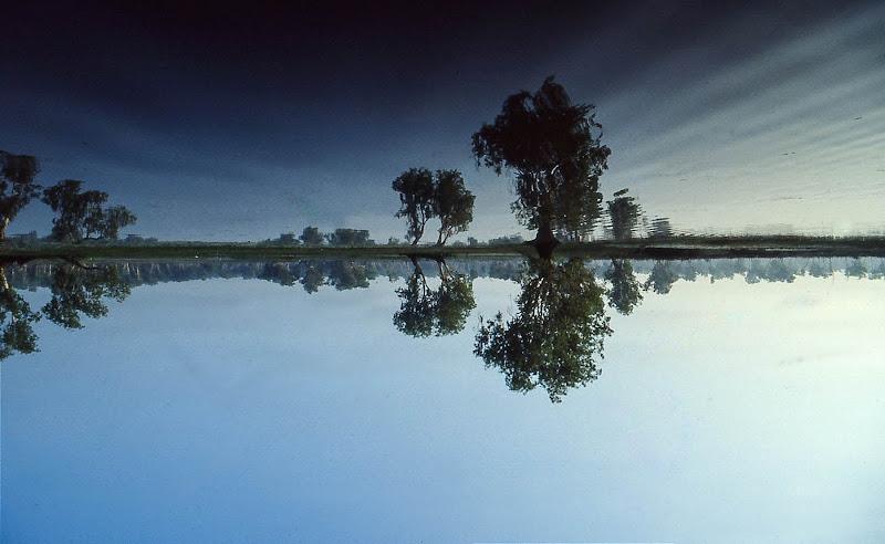Yellow waters di sarre 49
