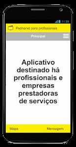 pednanet - profissional screenshot 2