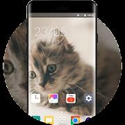 Theme for pet kitty oppo r17 icon