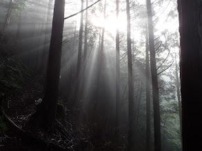 朝霧と太陽