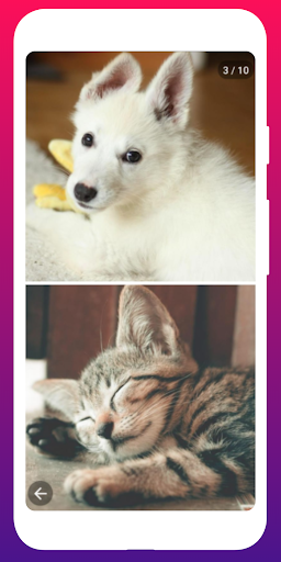 Woo - Chats, Friends & Dates 1.58 screenshots 4