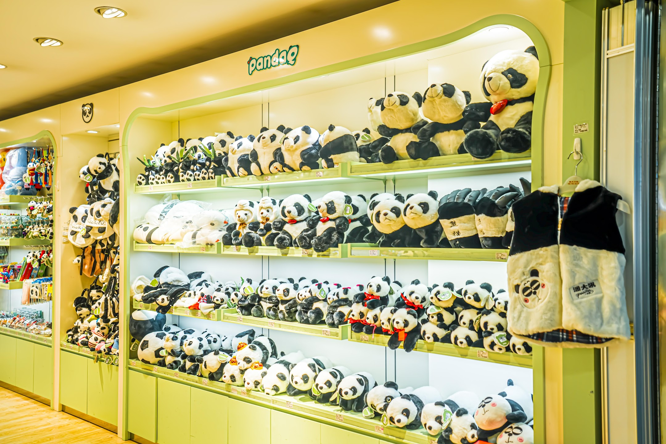 Shanghai Pudong International Airport Panda2
