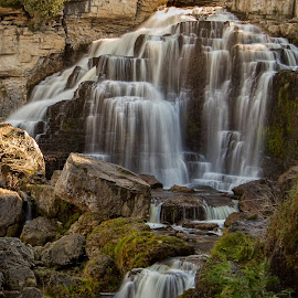 Inglis Falls by Carl Chalupa - Landscapes Waterscapes ( waterfalls, waterfall )
