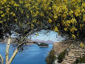 Photo: inkazeitlicheTerrassen auf der Isla del Sol