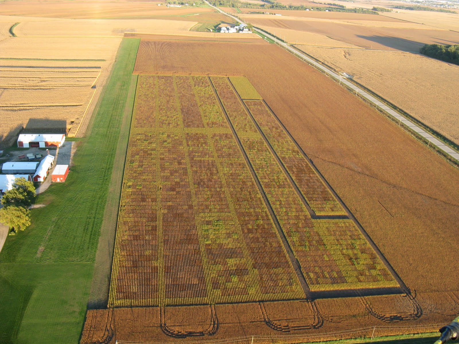 Photo: Ultralight runway next to colorful soybean test plots