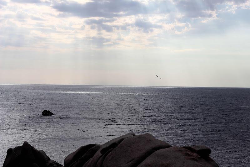 Tra le nuvole e il mare di scerda