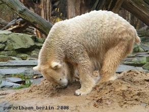 Photo: Der Sandhaufen ist aber auch interessant ;-)