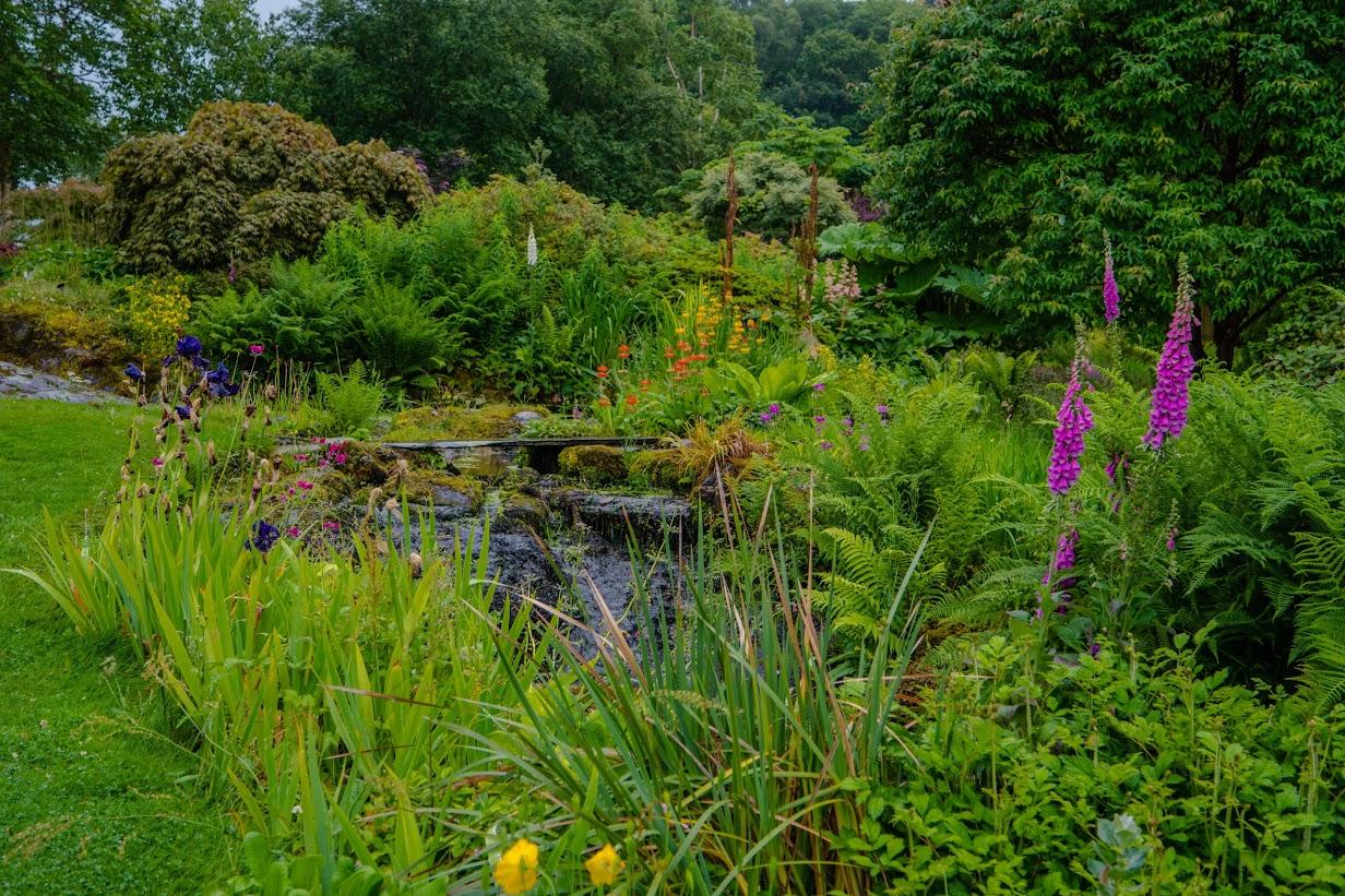 Holehird Gardens 2