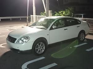 ティアナ TNJ31のカスタム事例画像 shouhei(´・ω・`)さんの2019年06月01日01:15の投稿