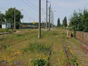 Photo: Tory dodatkowe (widok w stronę Bydgoszczy) {Bydgoszcz Fordon; 2013-06-08}
