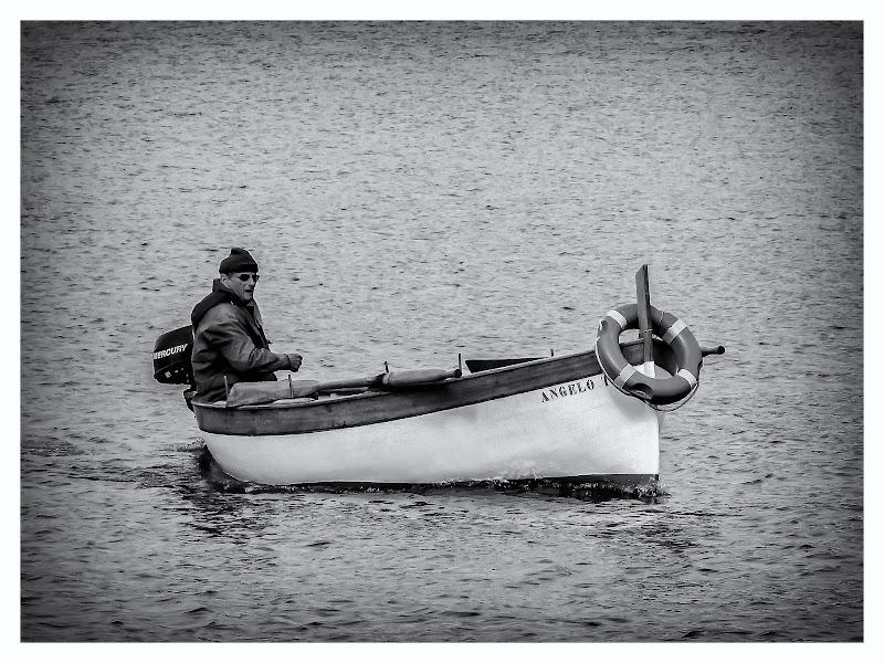 l'uomo e il mare di Navarro