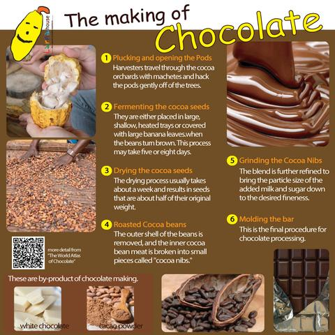 how to make chocolate ช็อคโกแลตทำมาจากอะไร โกโก้ทำมาจากอะไร