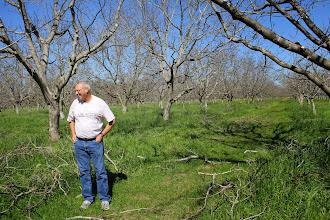 Photo: Sustainable nut farming, Lester family farm, Winters