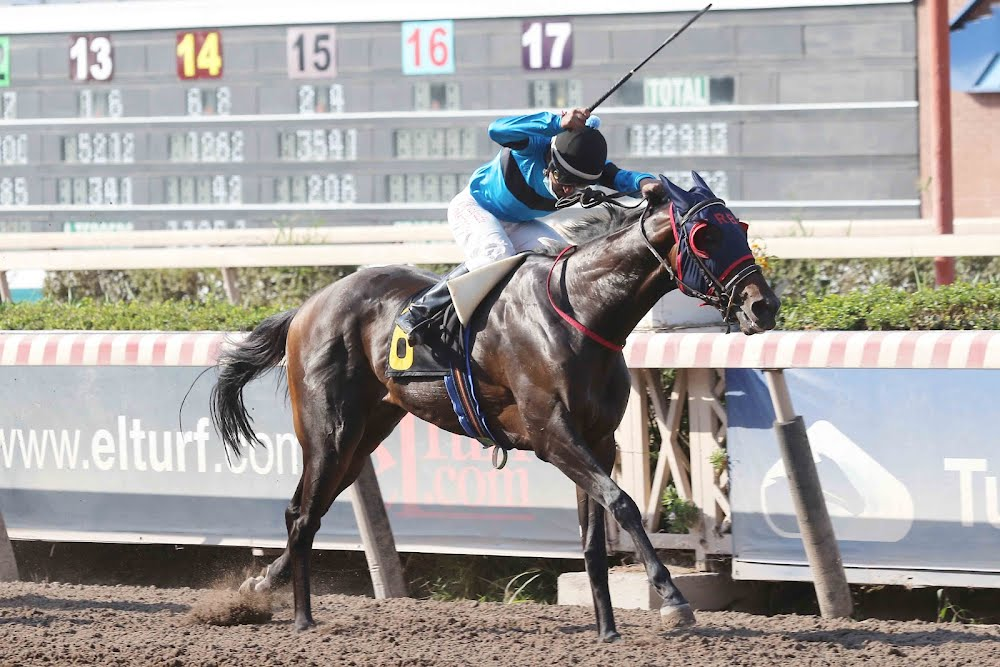 House Man (Mr Speaker) se lleva  Handicap (1200m-Arena-HCH). - Staff ElTurf.com