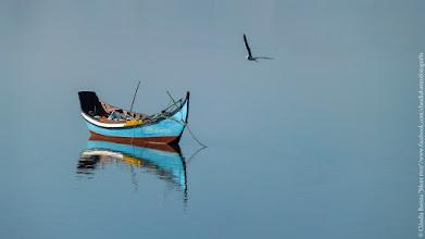 Photo: ©Cláudia Batista/Silent river/www.facebook.com/claudiabatistafotografia