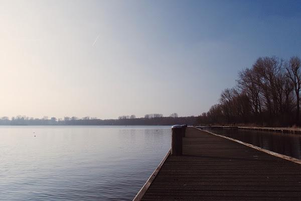 Camminare sull'acqua di Martina Pocchiari