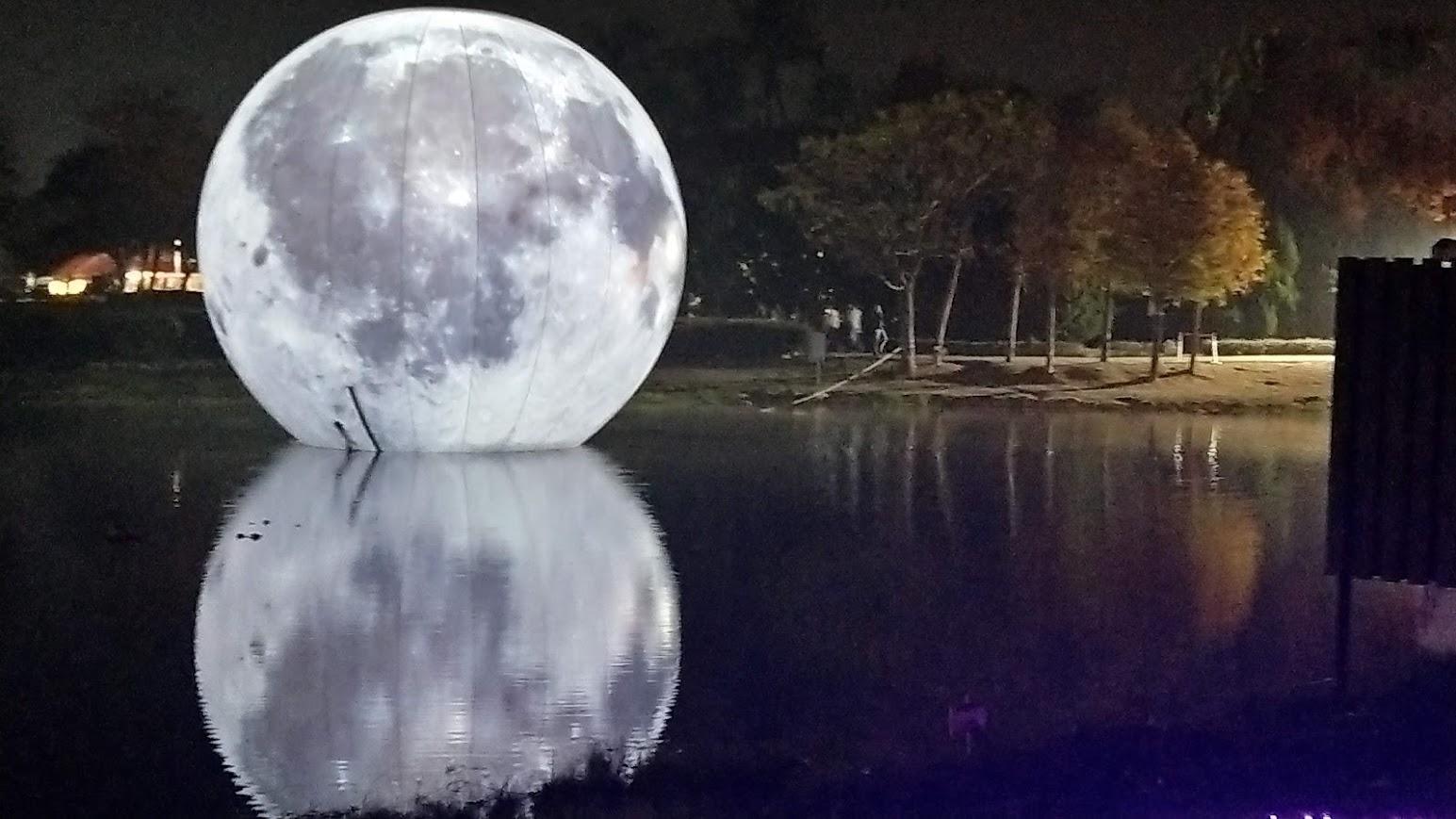 溪州公園- 2019 花在彰化 -