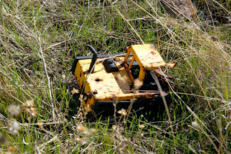 Photo: A tractor toy, used for target practice (like everything else here.)