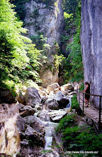 Photo: Schwangau. Potatschlucht.