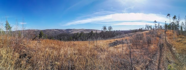 Путешествие выходного дня - панорама весенней природы Забайкальского края