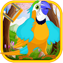 Talking Dancing Parrot icon