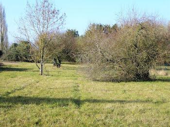 terrain à La Jard (17)