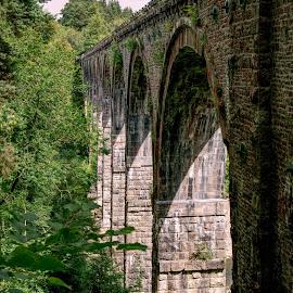 Viaduct by SJ Burnell - Buildings & Architecture Bridges & Suspended Structures ( viaduct, high, bridge, brick, long, structure, arches, stone )