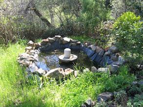 Photo: Yoga Farm, Grass Valley, CA - Durga pond
