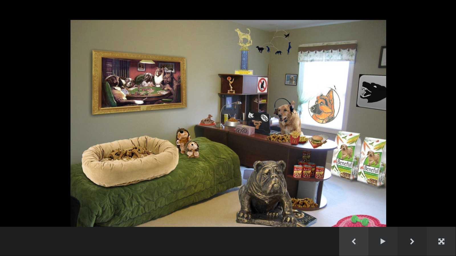 Dog room decor android apps on google play for Room design app using photos