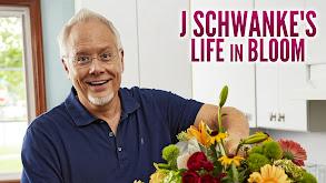 J Schwanke's Life in Bloom thumbnail