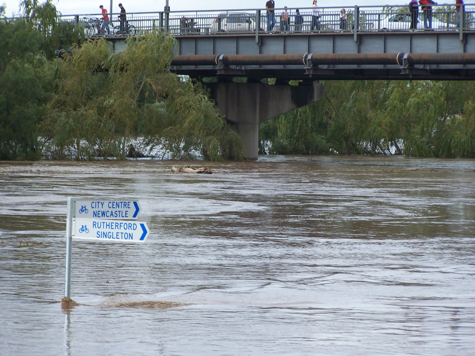 File:2007 Flood Maitland.jpg