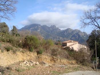 terrain à Ambiegna (2A)